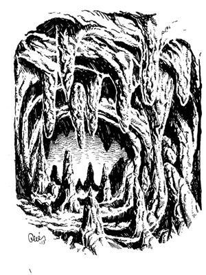 Earl Geier Cavern